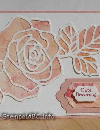 Gute Besserung mit Rosengarten und Seifenblasen Hintergrund