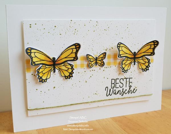 Mit dem Schmetterlingsglück ein bisschen Frühling