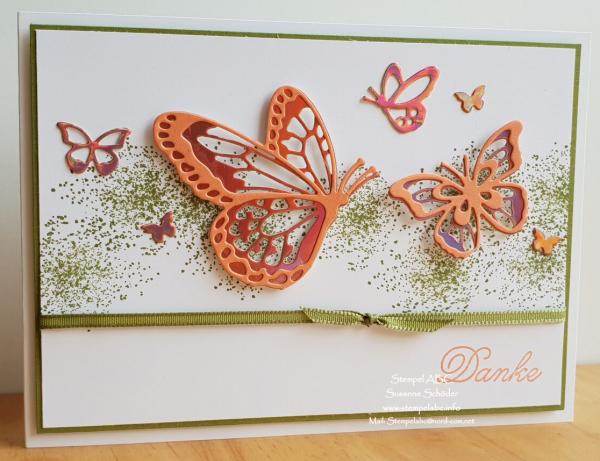Schmetterlinge gegen die Kälte Teil 2