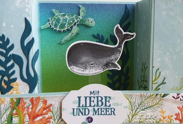 Fantastfisch-Brückenkarte-Bridgecard-Produkte